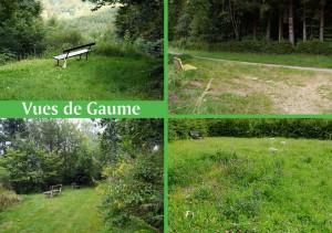Chas-Vues-de-Gaume