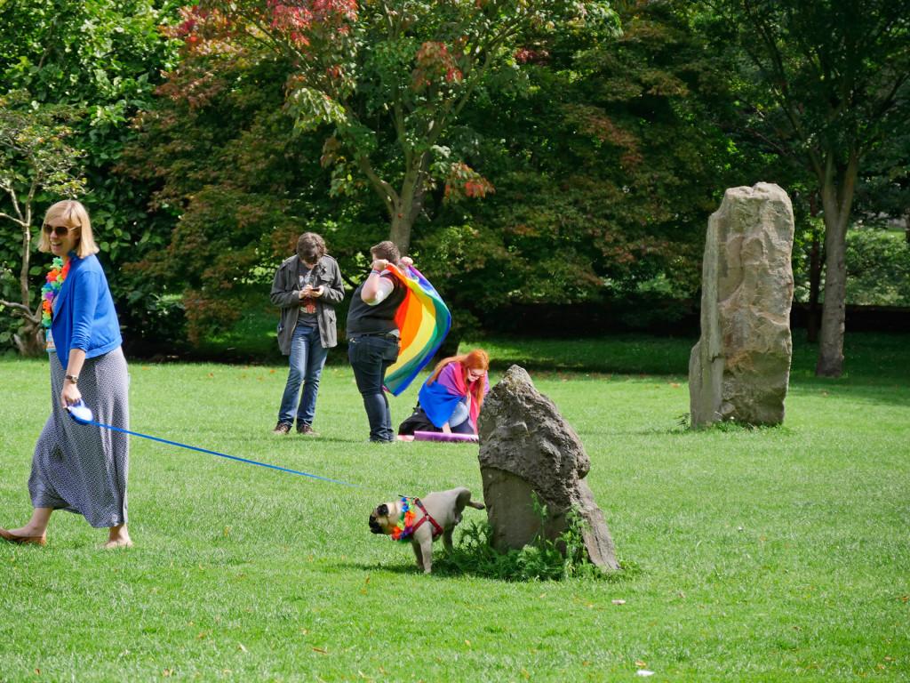 Gay-Pug-Pride-web